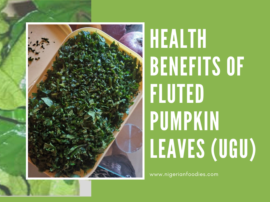 Health Benefits Of Fluted Pumpkin Leaves  Ugu    These